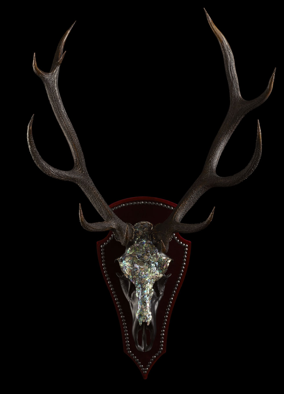 RED DEER STAGS HEAD