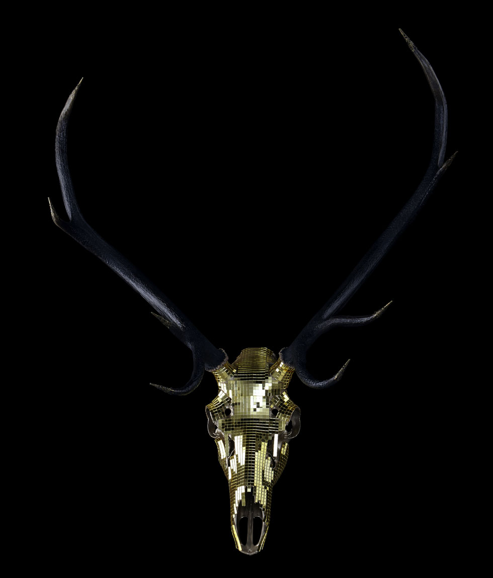stags head art